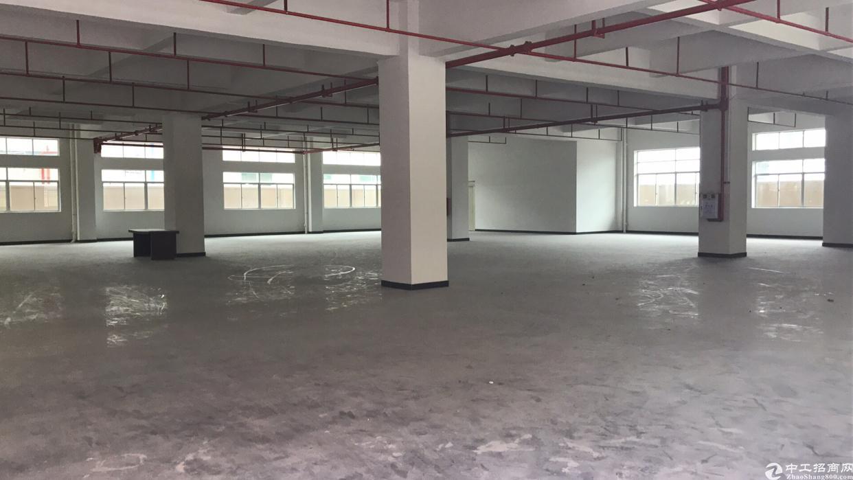 厂房面积6000平方米,宿舍加办公楼2100平方米,