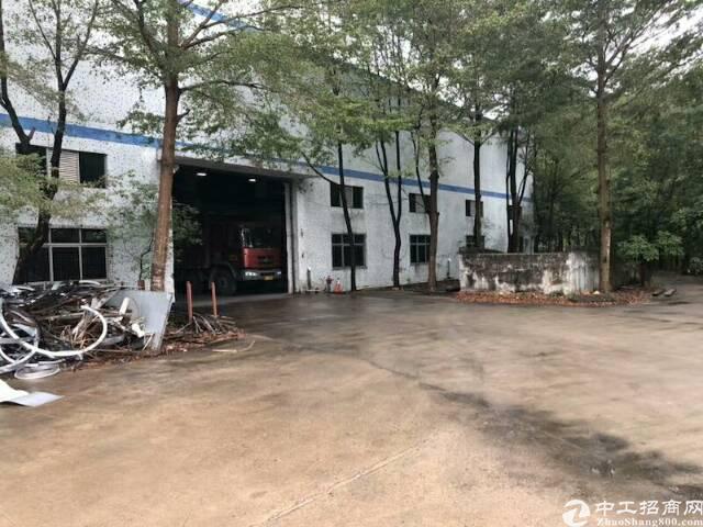 惠州市镇隆新出独院钢构6000平带红本-图4