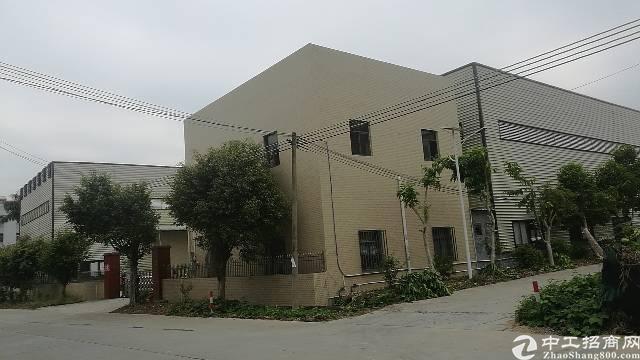 国有佂十一米高钢结构厂房出售。