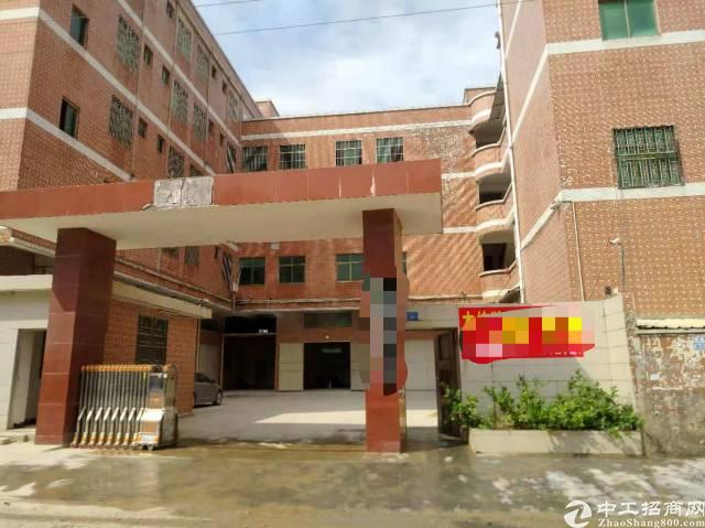 惠东平山356省道边独院红本厂房6360平米招租