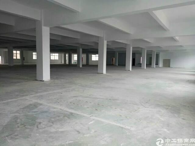 石岩机荷高速旁2400平方厂房出租,原房东