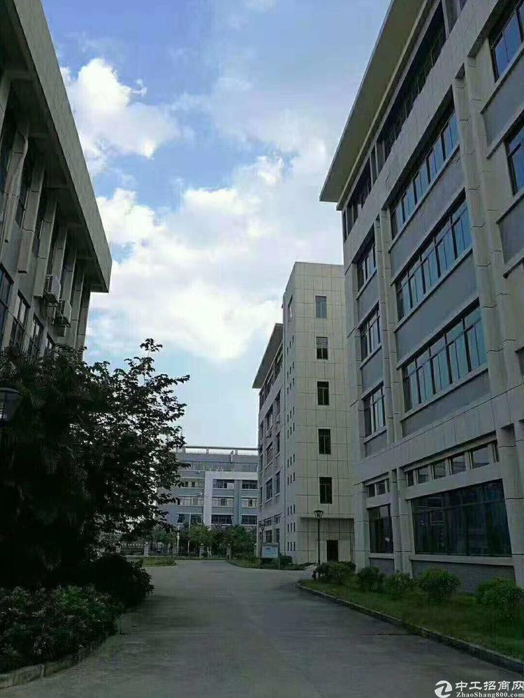 惠阳区新圩镇出售占地3600平方