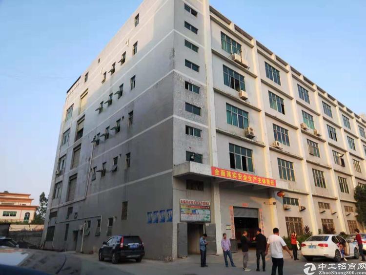 龙大高速新出重工业厂房1/2楼各2400平方一楼带牛角