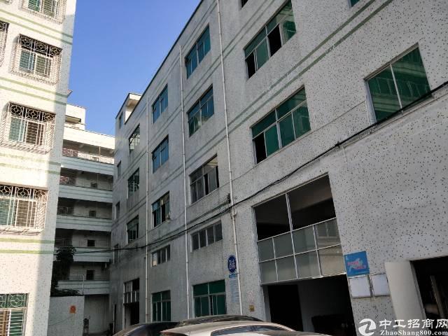 横岗简龙新出楼上3层每层900平可分租
