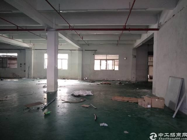 石碣新出原房东标准厂房二楼1900平方对外出租