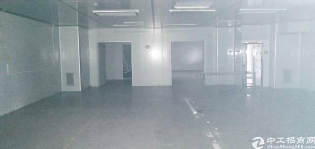 光明李松朗新出楼上带带精装修厂房1480平-图6