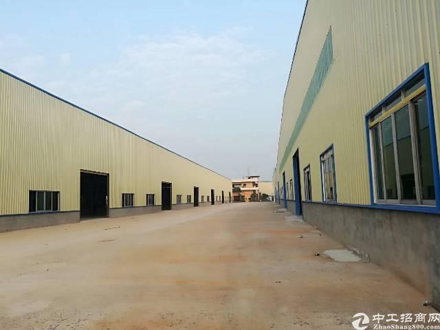 新塘新出全新钢结构厂房5万平米厂房招租(大小可分租)