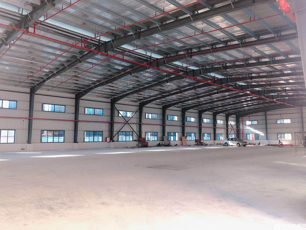 东莞水乡片区单一层厂房出售钢构厂房