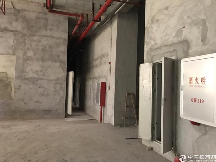 萝岗开发区大路边可以订建55000方不动产权厂房