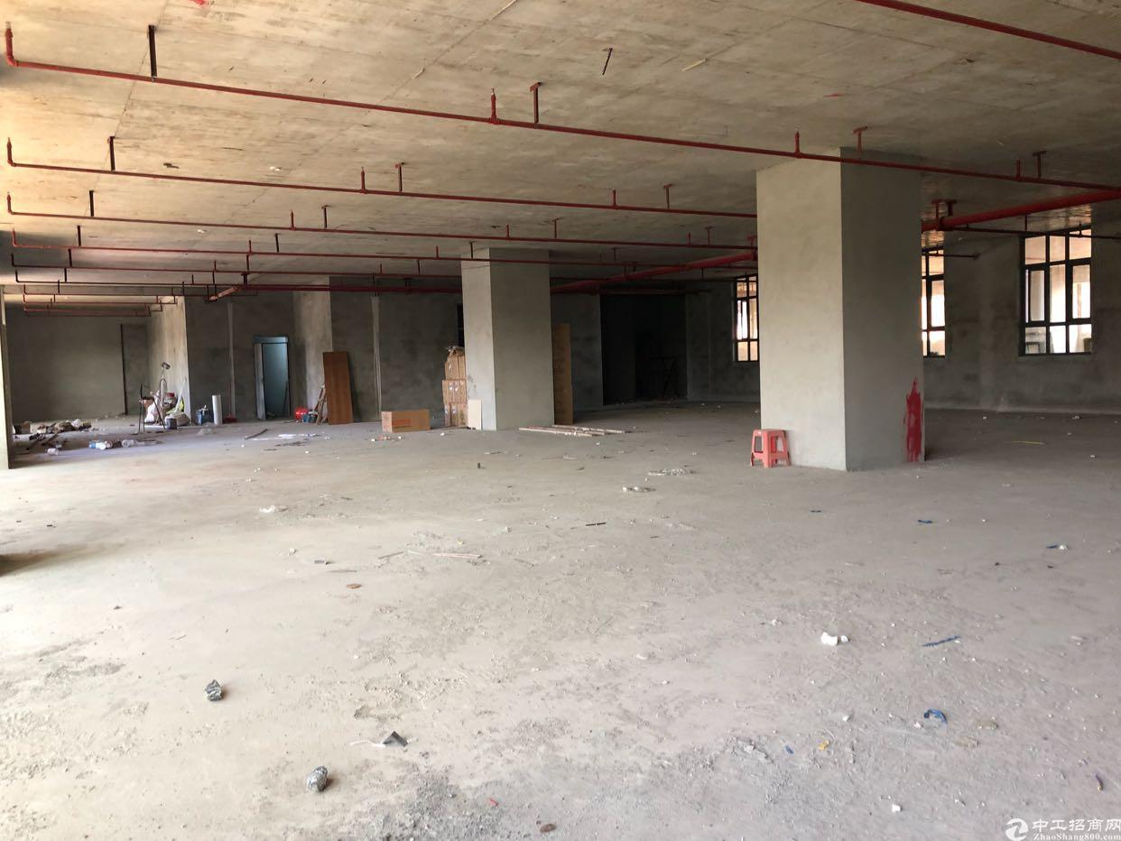 松山湖北全新工业红本厂房出售,可办环评,买厂房送洋房首付5成