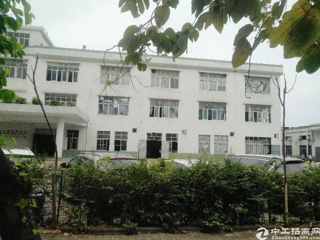 龙岗稀有3千平独院厂房出售,价格超值