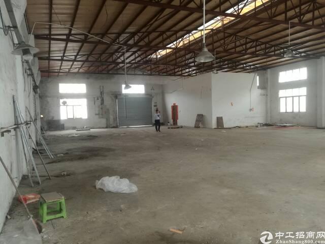 龙岗龙东650平钢结构出租,白菜价