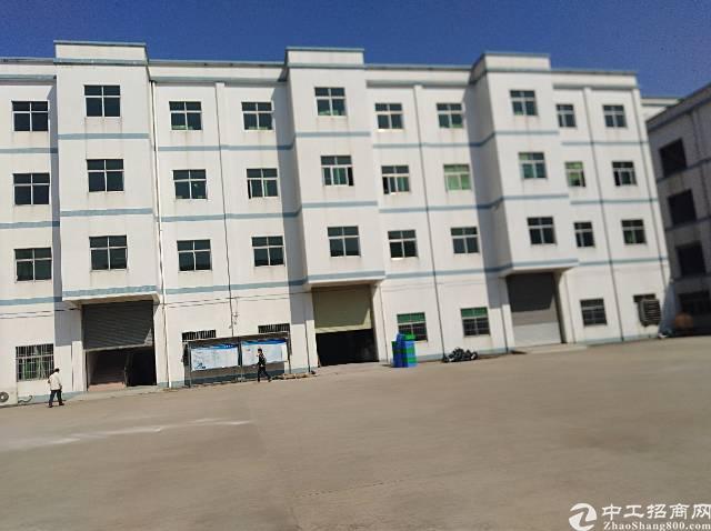 长沙星沙独门独院厂房招租108号-图6
