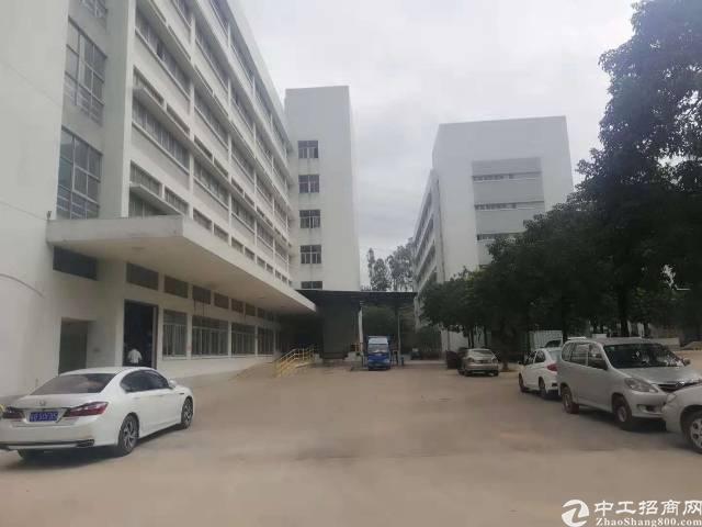 石岩高新红本厂房38000平28元租(可2000平起分租)