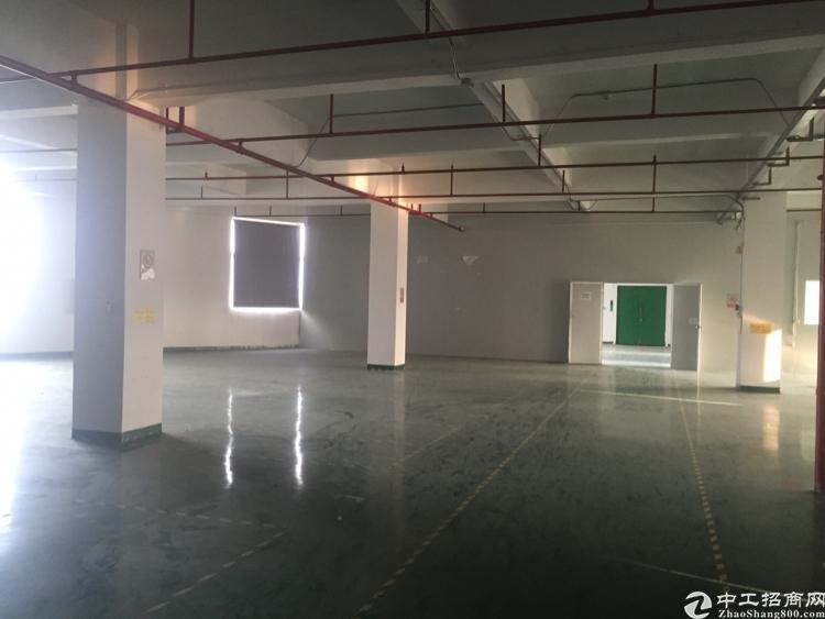 沙井高速路口带装修厂房出租1280平