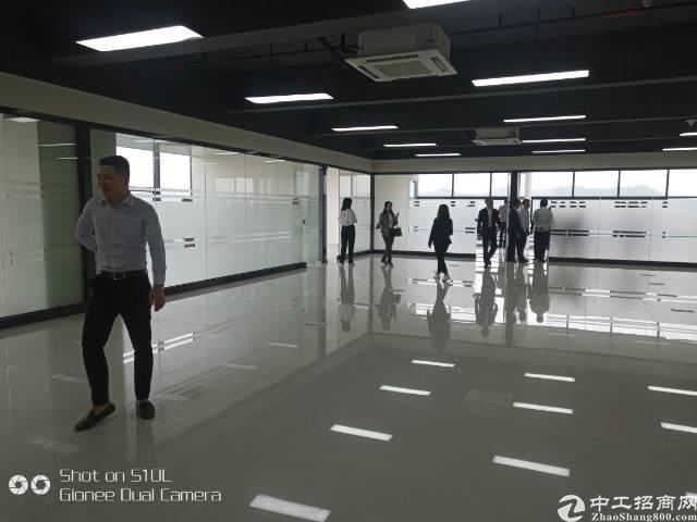 清溪镇靠近凤岗旁全新写字楼出租