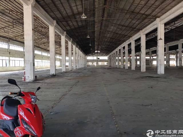 广州市新塘镇新出单层钢结构30000平大小可分租