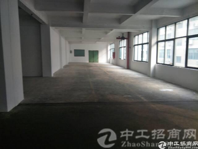厚街河田村标准厂房出租楼上3-5层各650平带全新三吨大货梯