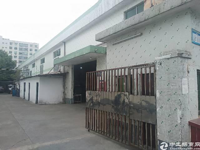 公明西田新出8米高钢结构厂房1000平方