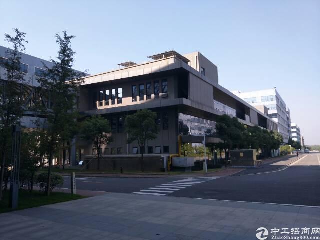 黄陂临空生物医药产业园5000方,配套齐全可分租