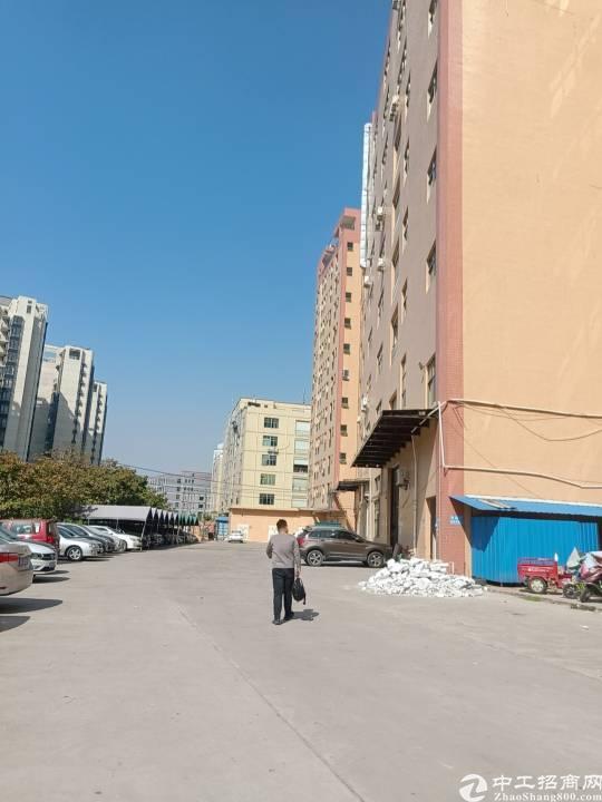公明楼村大型工业园新出一楼800平方,带行车精装修办公室