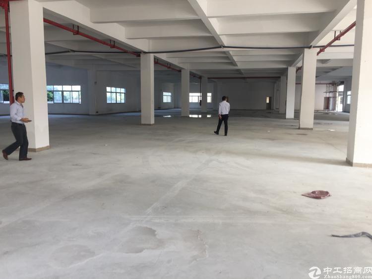 东莞望牛墩镇酒店式标准厂房