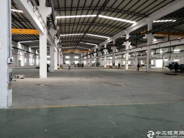 公明新出单一层钢构厂房6800平方米