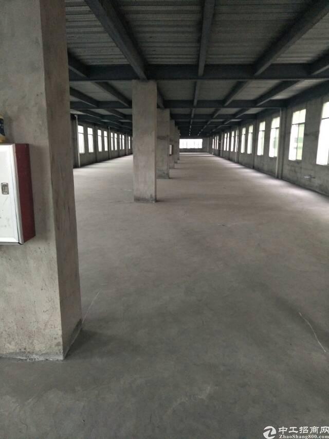 新空出标准厂房二楼