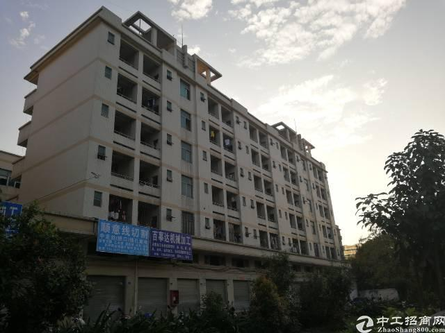 福永和平可改公寓 酒店宿舍出租