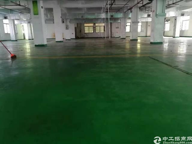 寮步分租标准厂房四层共4800平