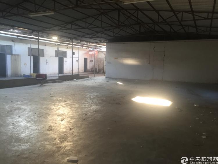 坪山宝山工业区旁新出独院800平米铁皮房13元一平钱出租