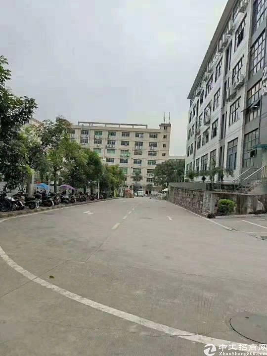 西丽白芒关口新出带卸货台一楼2300平厂房招租-图2