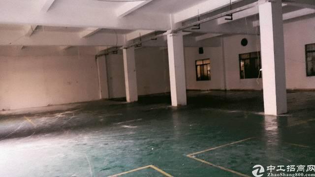 清溪镇带环保证标准厂房1200平米出租-图4