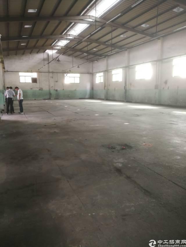 横岗大康标准钢构800平米厂房招租
