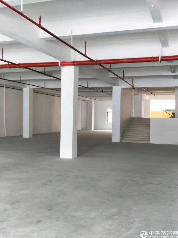 石碣新出原房东标准厂房一楼2000平方对外出租