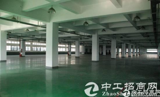 大朗佛新原房东新出独门独院3000平米标准厂房招租-图2