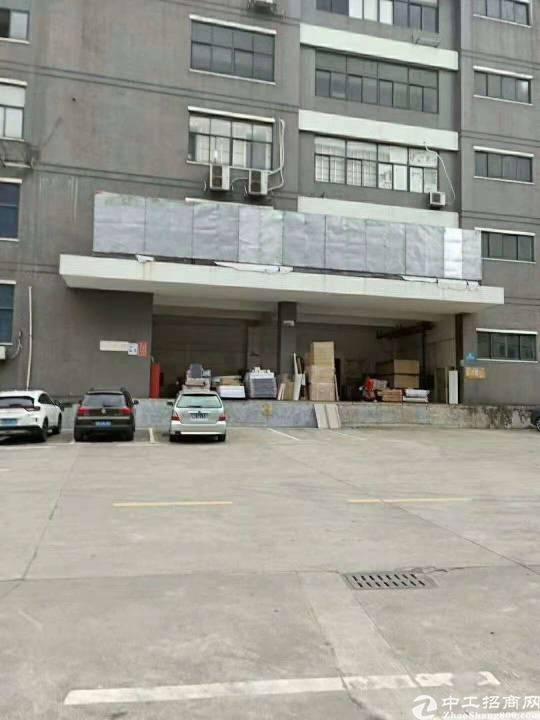 西丽白芒关口新出带卸货台一楼2300平厂房招租-图3