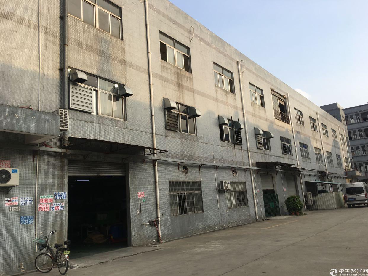 横沥镇租客分租工业园区三楼标准厂房800平