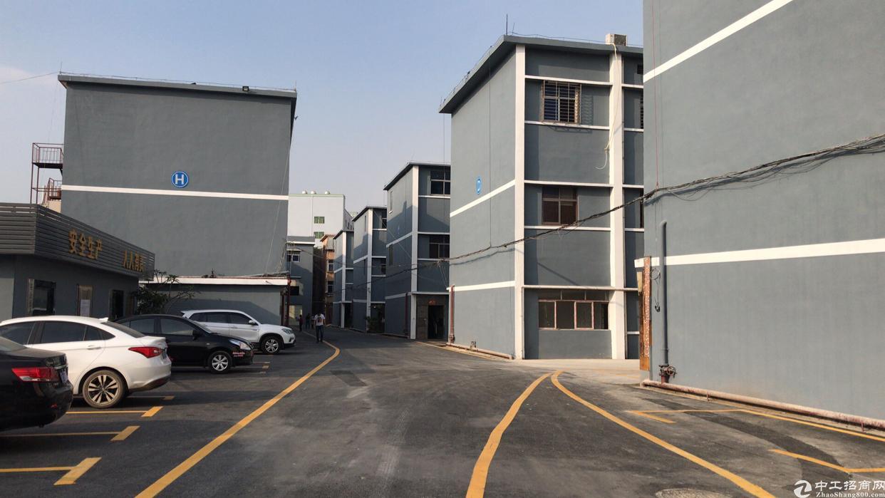 松岗溪头医院附近新出楼上整层300平方带装修标准厂房