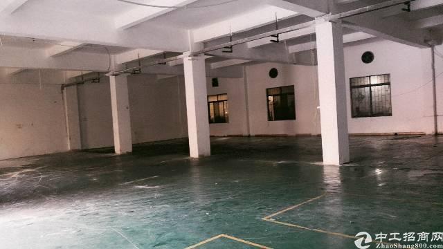 清溪镇带环保证标准厂房1200平米出租-图2