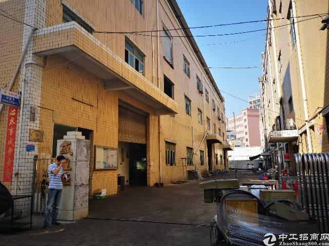 公明上村独门独院1-3层3600平米租25块