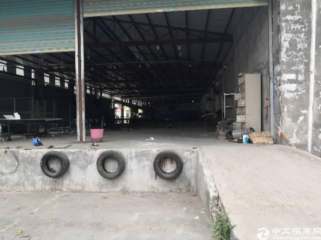 坂田杨美环城路新出物流仓鼠4500平大小可分