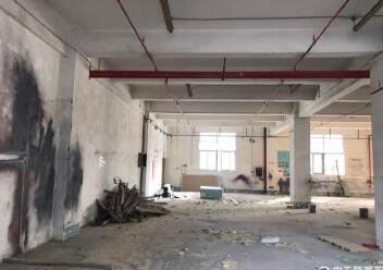 固戍一楼1000平大小可以分租,适合做汽车美容保养维修仓库图片2