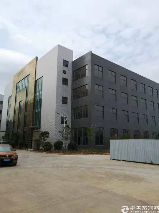 阳逻开发区4000方独栋厂房,手续配套全