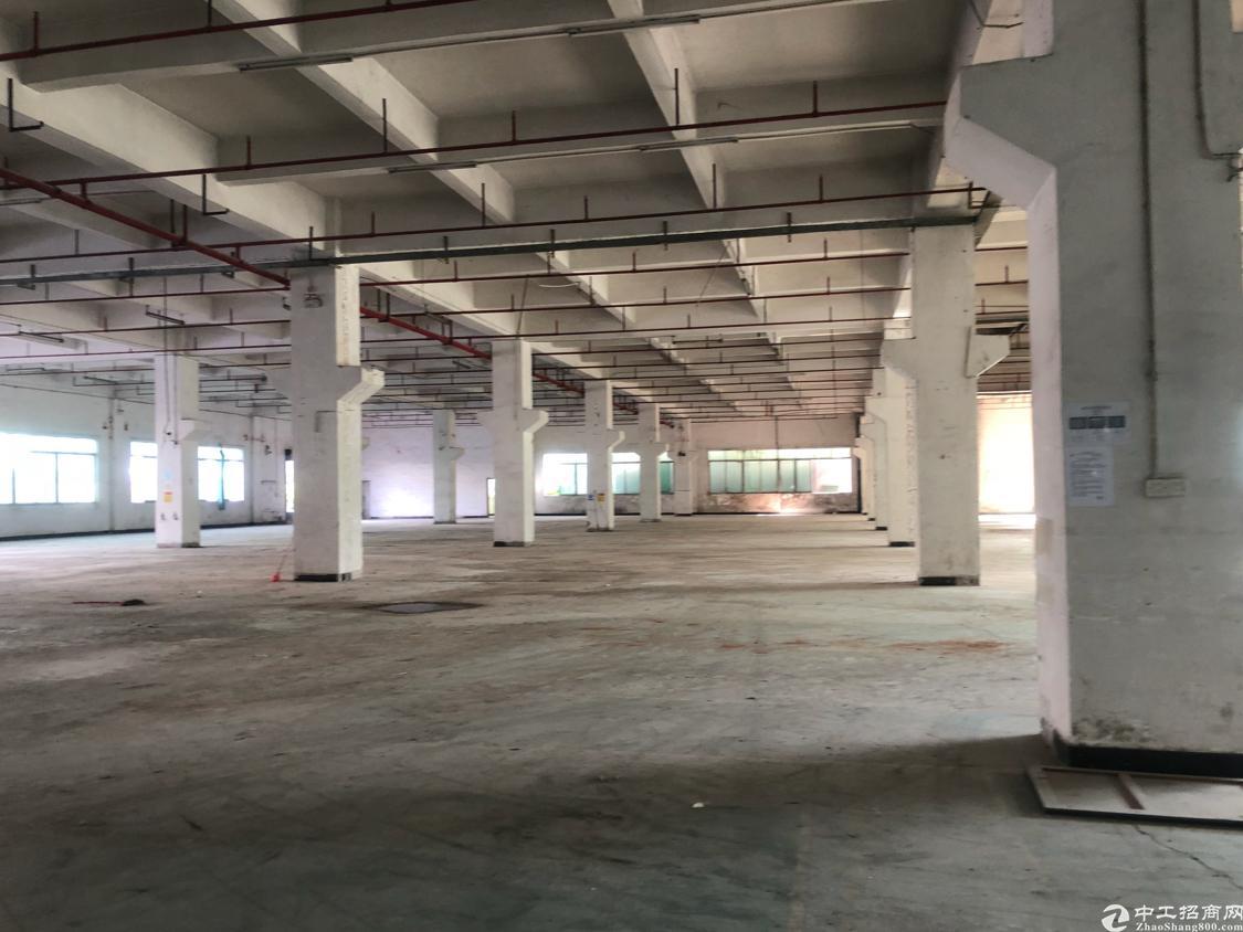 三江工业区一楼7米高3000平方带喷淋厂房出租