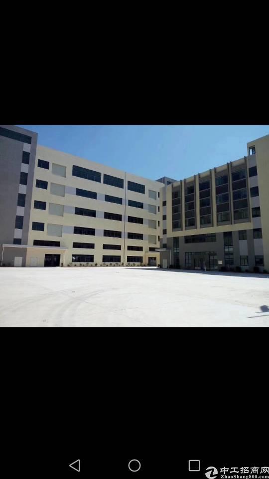仲恺沥林工业区全新标准厂房出售