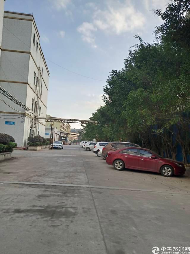 凤岗镇金凤凰大道旁新出二楼标准厂房