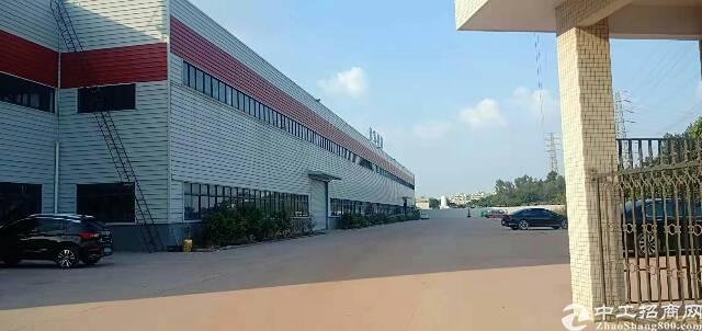 大朗镇洋乌村新出单一层钢构独院厂房9600平方,滴水12米-图3
