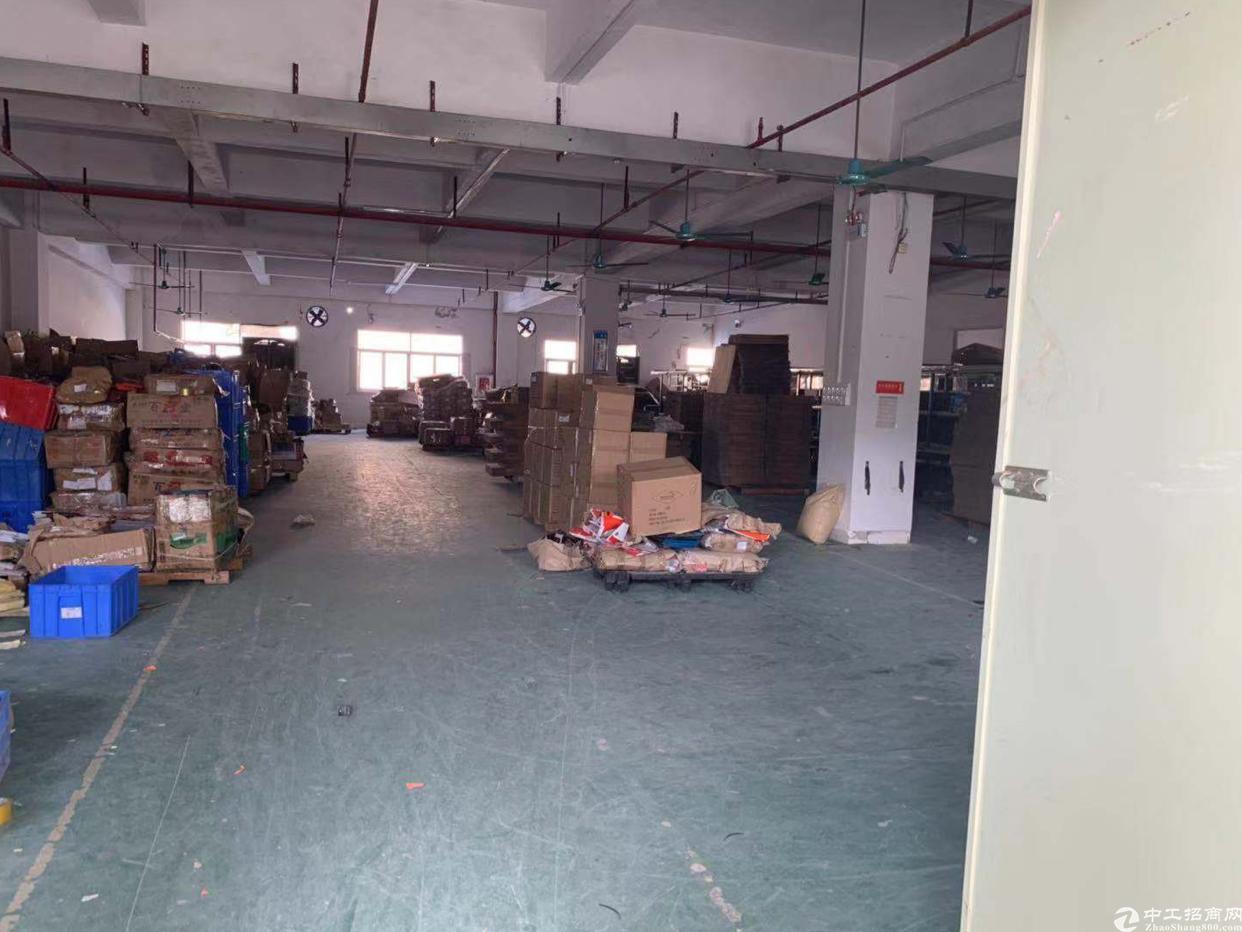 虎门镇北柵独立工业园区三楼分租800平方实际面积有货梯