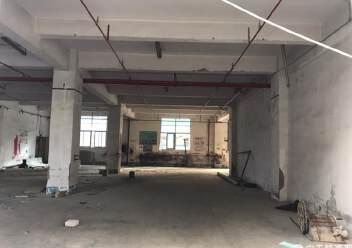 固戍一楼1000平大小可以分租,适合做汽车美容保养维修仓库图片3